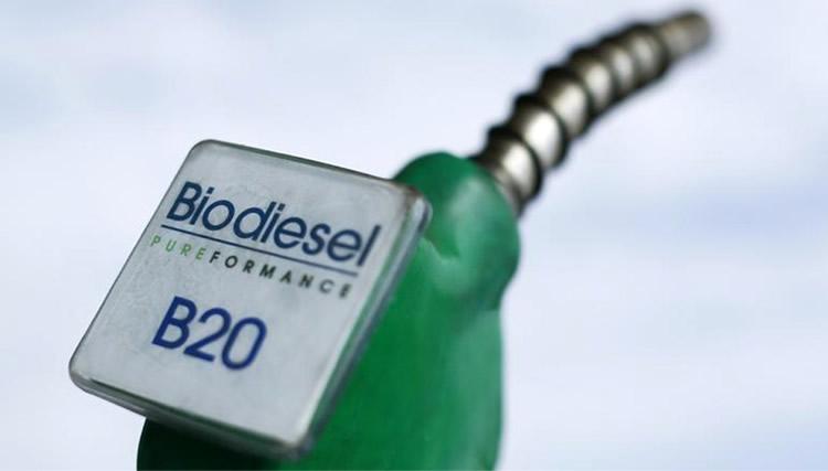 Aseguran que el precio del gasoil en el surtidor bajaría si se incorporara mayor porcentaje de biodiesel