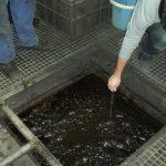 Convierten residuos peligrosos de hidrocarburos en energía reutilizable