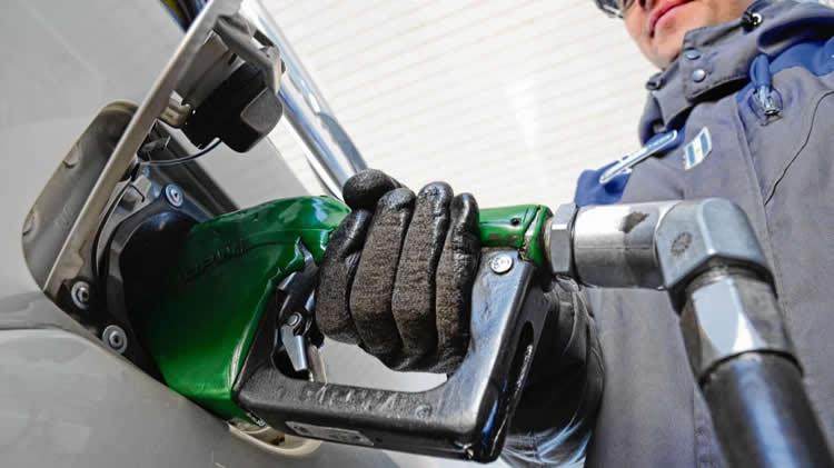 La crisis de los biocombustibles y un inesperado perjuicio para la salud de los playeros