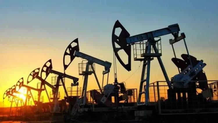"""Se desploma el precio del petróleo y las Estaciones de Servicio exigen participar de la negociación por el """"barril criollo"""""""