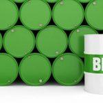 Diputados reclaman un precio sostén para los biocombustibles