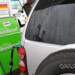 Estaciones de Servicio proponen integrarse a la cadena de comercialización de los biocombustibles