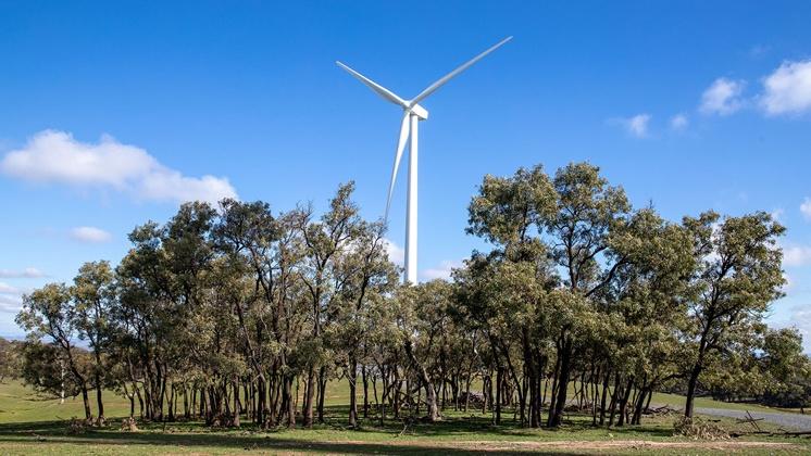 El Gobierno avanza en la certificación de un generador eólico que reducirá el consumo eléctrico de las Estaciones de Servicio