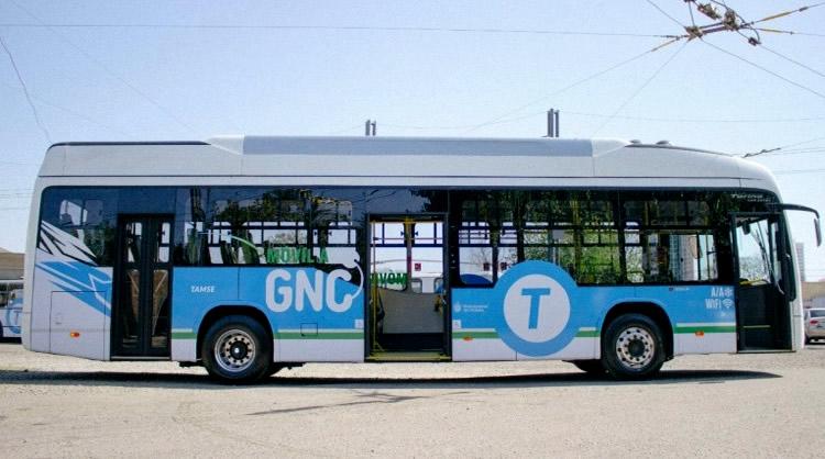 """Combustibles sustentables: El gobierno lanzará el """"Plan Nacional de Transporte y Cambio Climático"""""""